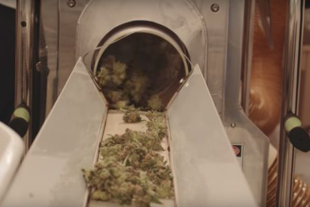 urora Cannabis Inc (TSE:ACB) (OTCQB:ACBFF) (FRA:21P) has upped the ante again with arch-rivals Canopy Growth Corp (TSE:WEED) (OTCMKTS:TWMJF) (FRA:11L1) andAphria Inc (TSE:APH) (OTCMKTS:APHQF) (FRA:10E) by announcing the company's (and the industry's) first ever export to Italy. The company made the announcement that it had successfully made the shipment through Pendianos GmbH, its wholly owned German subsidiary.